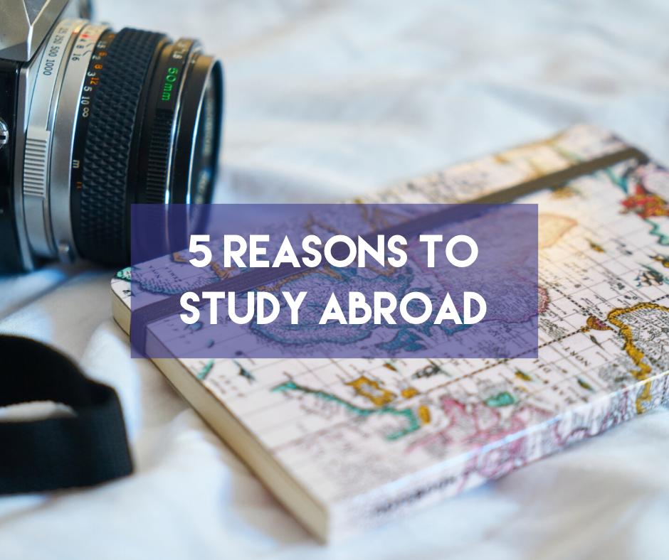 En este momento estás viendo Five reasons to Study Abroad